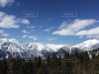 風景の写真・画像素材[239824]