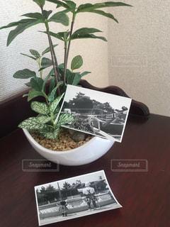 インテリアの写真・画像素材[241941]