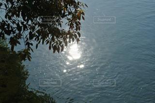 自然の写真・画像素材[242363]