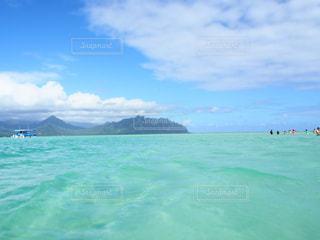 海の写真・画像素材[240033]