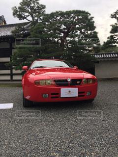 No.251603 秋