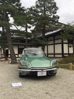No.251604 秋