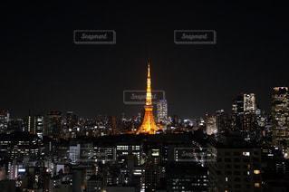 東京タワーの写真・画像素材[241628]