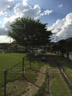公園の写真・画像素材[240799]