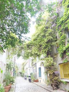 パリの小道の写真・画像素材[6595]