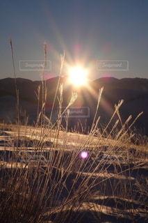 自然の写真・画像素材[6707]