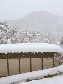 雪 - No.312247