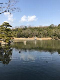 木々 に囲まれた水の体の写真・画像素材[1024777]