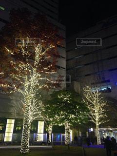 風景 - No.256221