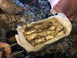 オイルサーディン丼の写真・画像素材[3926992]