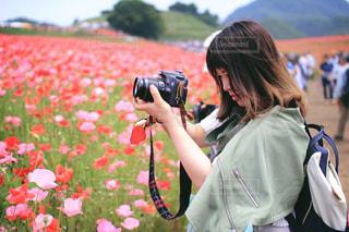 女性の写真・画像素材[243867]