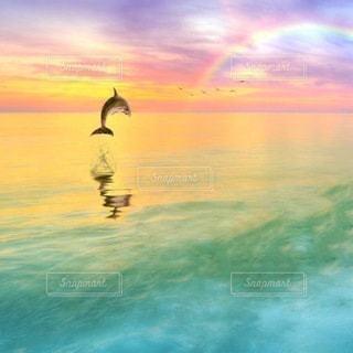 自然,風景,空,イルカ,虹