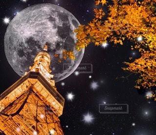 東京タワーの写真・画像素材[10906]