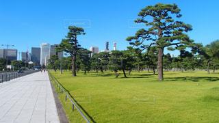 No.243730 風景