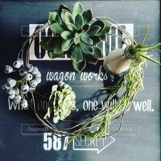 花の写真・画像素材[9973]
