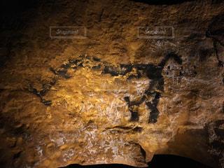ラスコー洞窟絵画の写真・画像素材[275677]
