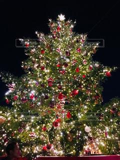 クリスマス ツリーの写真・画像素材[869898]