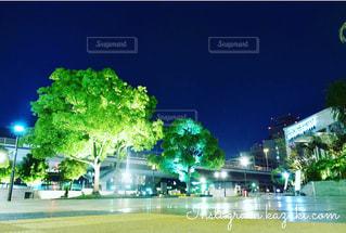 夜景の写真・画像素材[599416]
