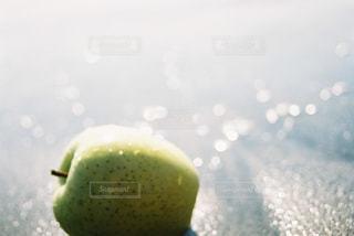 食べ物 - No.245610