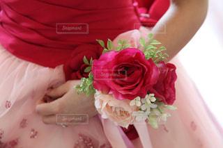 花の写真・画像素材[250997]
