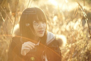 ガラスを保持している女性の写真・画像素材[36]