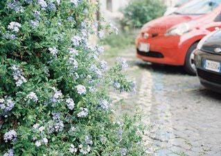 未舗装の道路を運転車の写真・画像素材[1058]