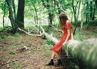 森の中の人の写真・画像素材[1066]