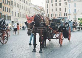 街で馬車馬に乗る男の写真・画像素材[1350]