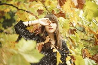 女性,1人,20代,自然,秋,人物,若い,カメラ目線,若い女性
