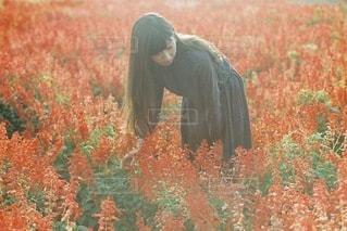 草の覆われてフィールド上に立っている人の写真・画像素材[91]