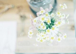 近くの花のアップの写真・画像素材[122]
