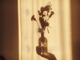 花の写真・画像素材[272201]