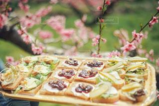 食べ物の写真・画像素材[472032]