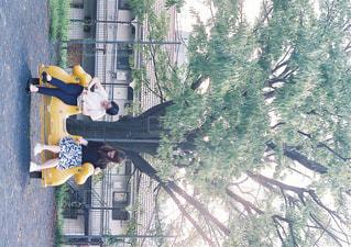 公園で遊ぶ女性の写真・画像素材[915330]