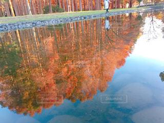 水の体の写真・画像素材[915338]