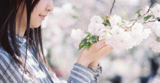 近くに花を持っている人のの写真・画像素材[1119465]