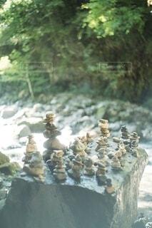 岩の上に花の花瓶の写真・画像素材[3879607]