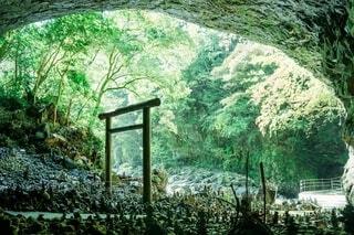宮崎県 天岩戸神社の写真・画像素材[3879612]