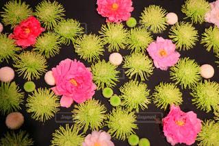 花の写真・画像素材[2396943]
