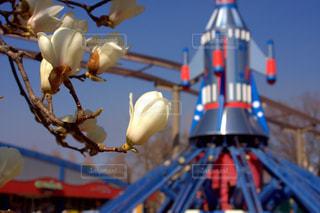 春に咲く花と遊園地の写真・画像素材[1069400]