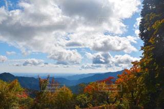 背景の山と木 - No.753499