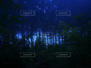 夜に見上げる空の景色 - No.759696