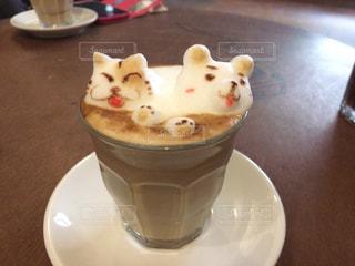 猫の写真・画像素材[249706]
