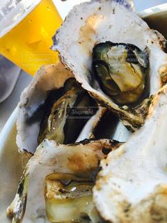 牡蠣の写真・画像素材[303129]