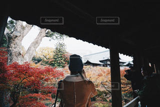 風景の写真・画像素材[277605]