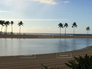 水の体の近くのビーチでヤシの木のグループの写真・画像素材[851055]