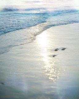 海の写真・画像素材[476330]