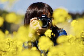 春の写真・画像素材[380414]