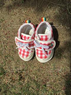 靴の写真・画像素材[252034]