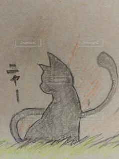 猫の写真・画像素材[324729]